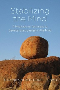 Cover Stabilizing the Mind