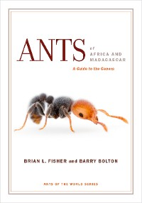 Cover Ants of Africa and Madagascar