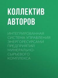 Cover Интегрированная система управления энергоресурсами предприятий минерально-сырьевого комплекса