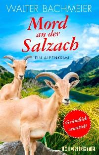 Cover Mord an der Salzach