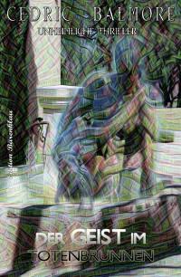 Cover Der Geist im Totenbrunnen