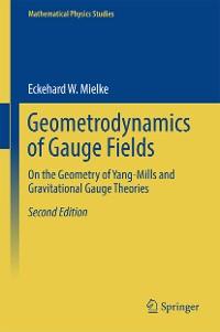 Cover Geometrodynamics of Gauge Fields