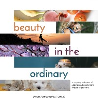 Cover Beauty in the Ordinary
