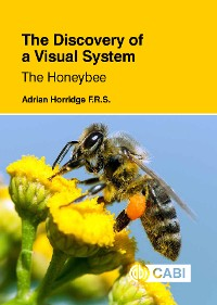 Cover The Discovery of a Visual System - The Honeybee