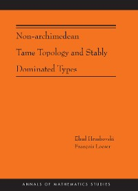 Cover Non-Archimedean Tame Topology and Stably Dominated Types (AM-192)