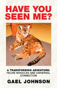 Cover Have You Seen Me?