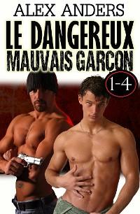 Cover Le dangereux  mauvais garçon 1-4 : Tabou gay érotique de mâle Alpha dominant