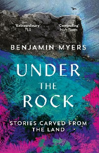 Cover Under the Rock