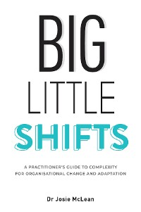 Cover Big Little Shifts