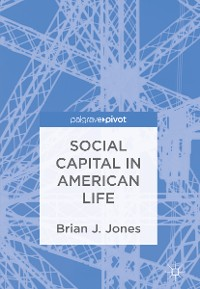 Cover Social Capital in American Life