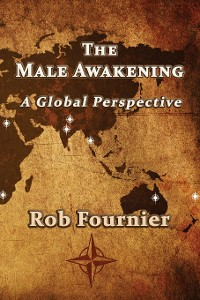 Cover The Male Awakening
