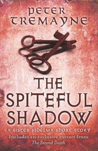 Cover Spiteful Shadow (A Sister Fidelma e-novella)