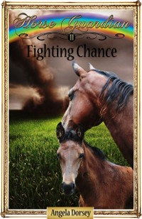 Cover Fighting Chance