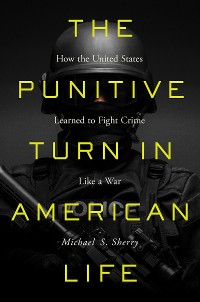Cover The Punitive Turn in American Life