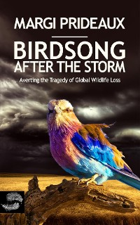 Cover Birdsong After the Storm