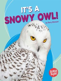 Cover It's a Snowy Owl!