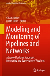 Cover Modeling and Monitoring of Pipelines and Networks