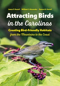 Cover Attracting Birds in the Carolinas