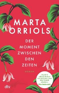 Cover Der Moment zwischen den Zeiten