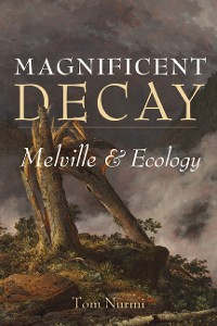 Cover Magnificent Decay