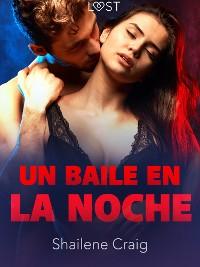 Cover Un baile en la noche - un relato corto erótico