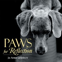 Cover Paws for Reflection