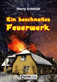 Cover Ein beschneites Feuerwerk