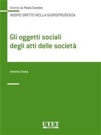 Cover Gli oggetti sociali degli atti delle società