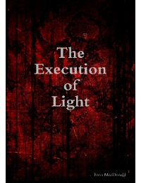Cover The Execution of Light