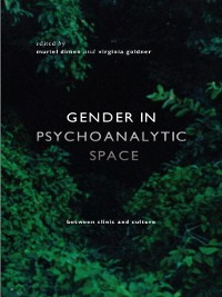 Cover Gender in Psychoanalytic Space