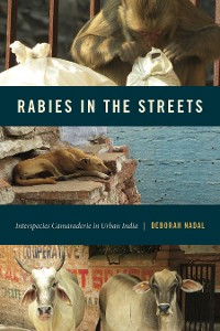 Cover Rabies in the Streets