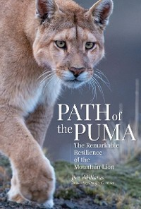 Cover Path of the Puma