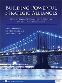 Cover Building Powerful Strategic Alliances