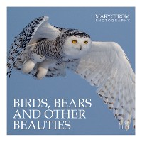 Cover Birds, Bears and other Beauties