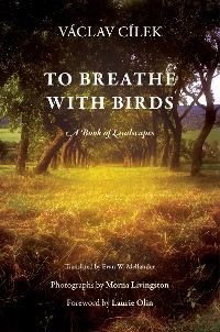 Cover To Breathe with Birds