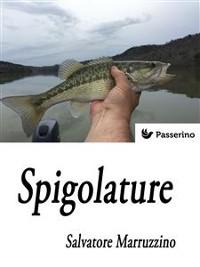 Cover Spigolature