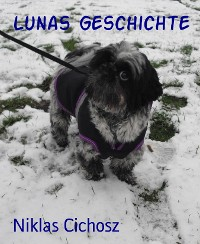 Cover Lunas Geschichte