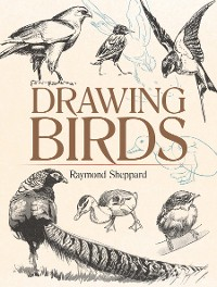Cover Drawing Birds