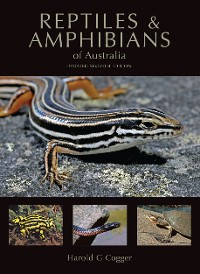 Cover Reptiles and Amphibians of Australia