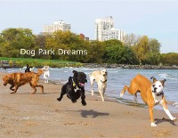 Cover DOG PARK DREAMS
