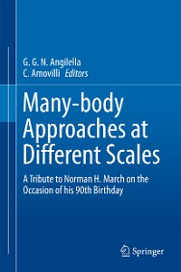 Cover Many-body Approaches at Different Scales