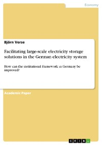 Cover Facilitating large-scale electricity storage solutions in the German electricity system