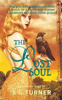 Cover The Lost Soul
