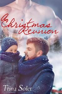 Cover A Christmas Reunion (Gay Romance)
