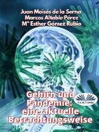 Cover Gehirn Und Pandemie: Eine Aktuelle Betrachtungsweise