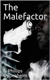 Cover The Malefactor