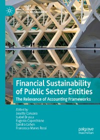 Cover Financial Sustainability of Public Sector Entities