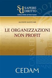 Cover Le organizzazioni non profit