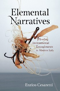 Cover Elemental Narratives