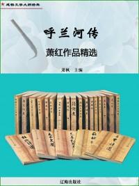 Cover Biography of Hulan River